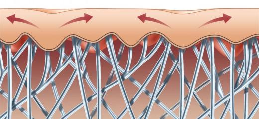 Come produrre collagene? Perchè è importante?